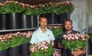 Julien (à g.) et Antoine Fernandez au milieu des premières pivoines stockées sur leur site des Fleurs du Péras à Mauguio, près de Montpellier.
