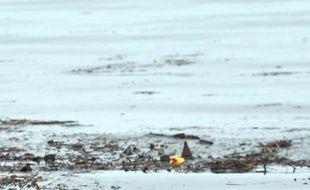 Face aux millions de tonnes de déchets recouvrant l'équivalent d'un sixième continent en mer, Familles de France a invité mardi les deux candidats à la présidentielle à présenter leurs solutions à l'occasion du village itinérant qu'elle monte à Paris du 25 au 29 avril.