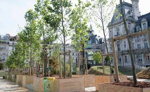 Dix euros les arbustes, cinq euros les plantes en conteneur. Ce samedi, la ville de Paris  met en vente à prix cassé le surplus de sa production horticole.