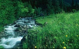 Le parc national des écrins dans le massif alpin.