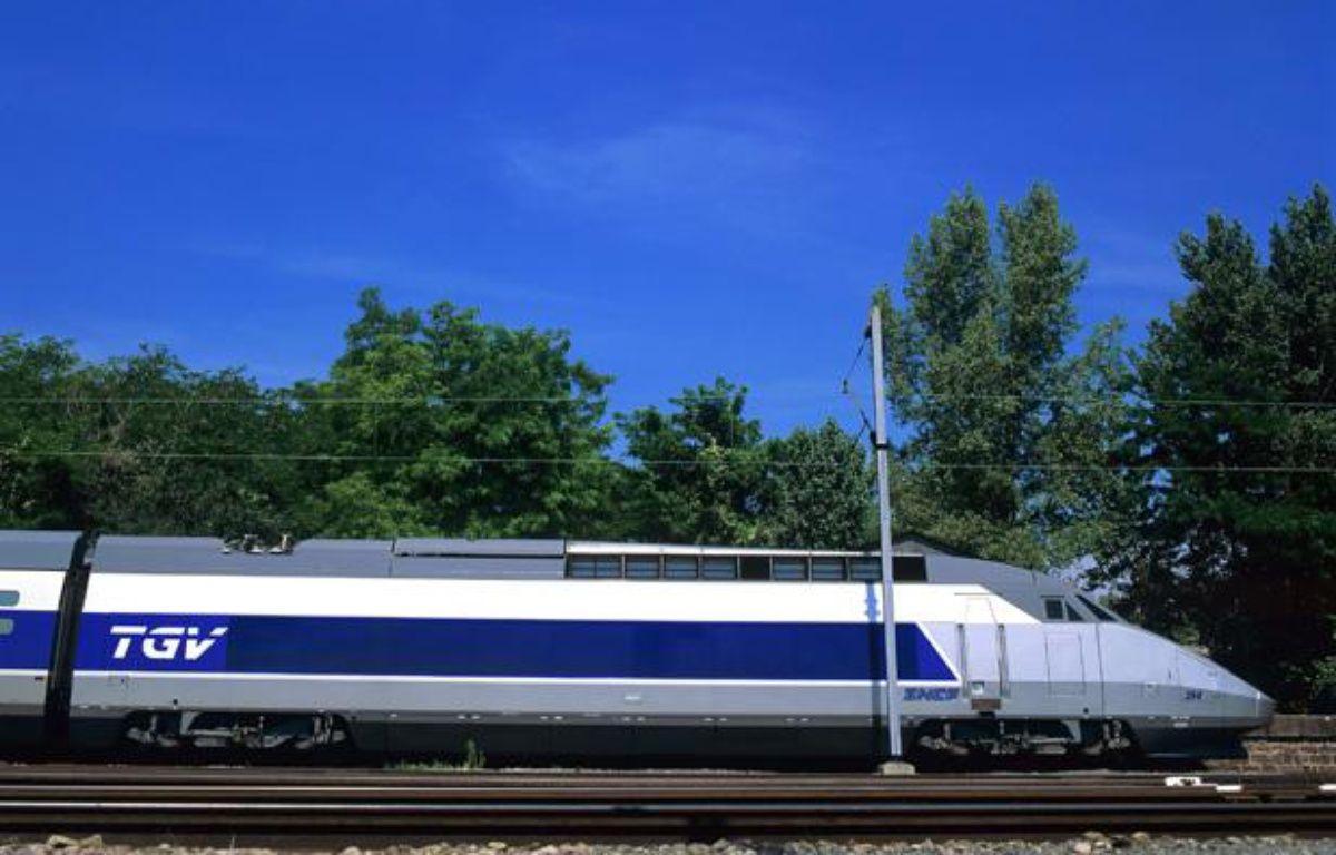 Illustration: Un TGV. – SUPERSTOCK/SUPERSTOCK/SIPA
