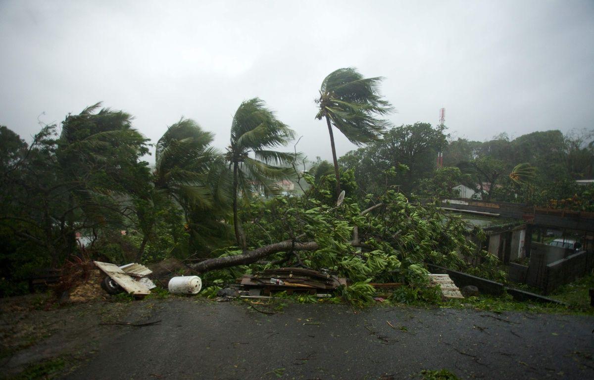 Le Guadeloupe touchée par l'ouragan Maria, le 19 septembre 2017. – AFP PHOTO / Cedrik-Isham Calvados