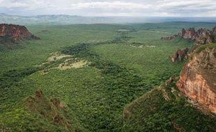 La déforestation illégale, qui prospère et représente jusqu'à 90% du commerce de bois dans les pays tropicaux, risque de réduire à néant les efforts déployés pour sauver la forêt, outil crucial de régulation du climat, avertissent jeudi l'ONU et Interpol dans un rapport.