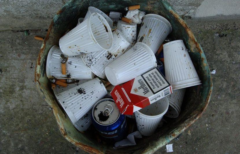 Fin du plastique à usage unique, quelles sont les alternatives?