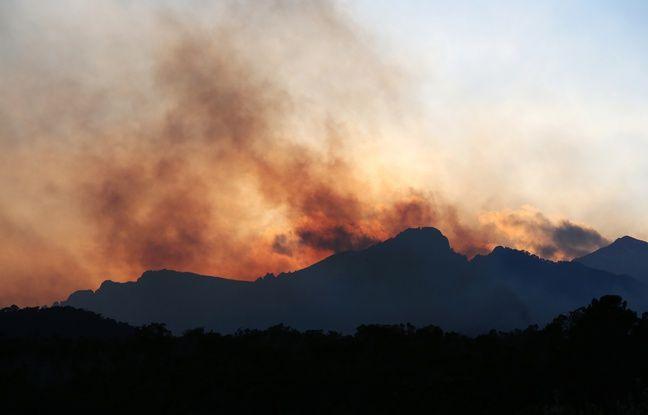 Tempête Ciara: Levée du confinement en Corse, des renforts aériens attendus pour éteindre le gigantesque incendie