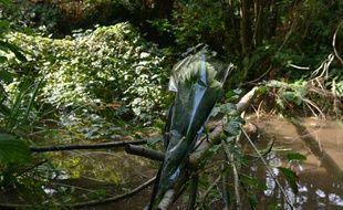 Des roses blanches ont été déposées à l'endroit où le corps de Victorine a été retrouvé lundi après-midi.