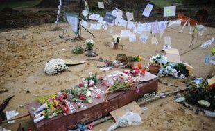 Photo prise le 6 novembre 2014, à Lisle-sur-Tarn (sud-oues) d'un faux cercueil fabriqué en hommage à Rémi Fraisse