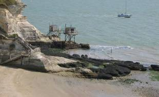 La plage de Meschers-sur-Gironde distinguée par le Pavillon Bleu