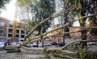 Environ 50.000 foyers du Sud-Ouest se sont réveillés sans électricité vendredi à cause d'un épisode rare et prolongé de vents soufflant à plus de 100 km/h qui ont provoqué des chutes d'arbres et de branches sur les lignes, a indiqué un porte-parole d'ERDF.