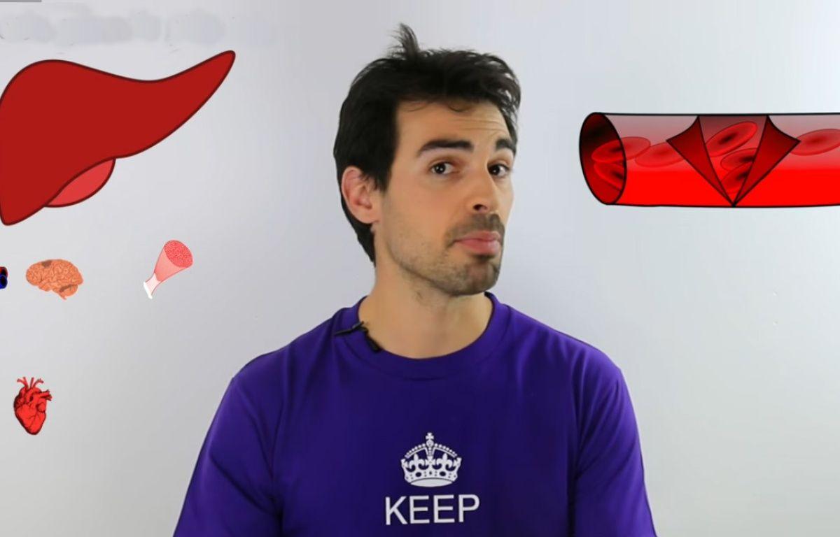 Sur sa chaîne Bio Logique, le Niçois Dimitri Garcia donne des cours sur Youtube  – Capture d'écran Youtube