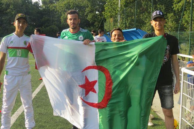 Les remplaçants de l'Algérie pendant la demi-finale.
