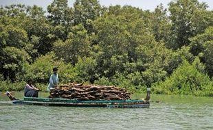 Des pêcheurs pakistanais naviguent le 29 avril 2014 sur l'Indus, rivière qui serpente au milieu de la mangrove