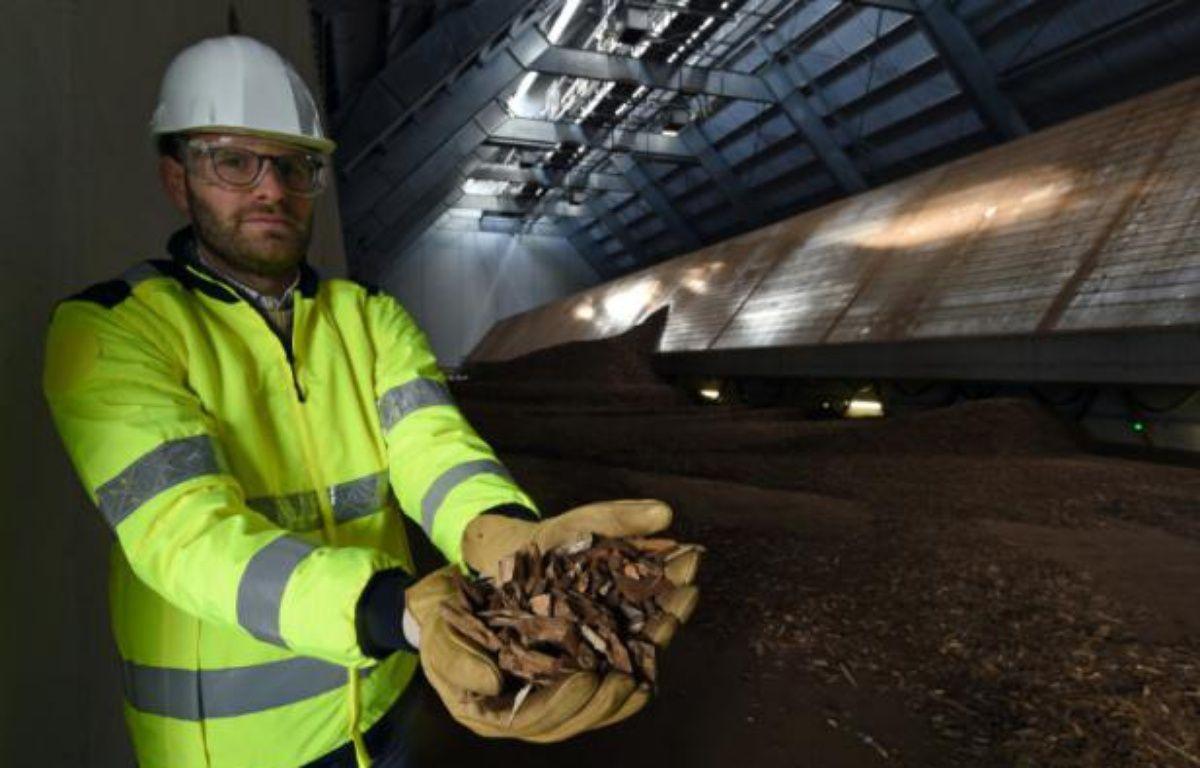 Un technicien montre des plaquettes de bois qui vont être brûlées dans la plus grande centrale biomasse de France, à Gardanne, près d'Aix-en-Provence, le 3 février 2016 – BORIS HORVAT AFP
