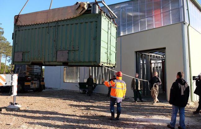 Les deux éléphants, dans un container, ont été déchargés par grue