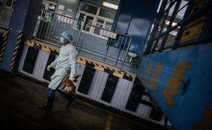 L'inquiétante grippe aviaire H7N9 se propage en Chine, où les autorités sanitaires ont annoncé samedi qu'une fillette de 7 ans était porteuse du virus à Pékin, le premier cas officiellement enregistré dans la capitale.
