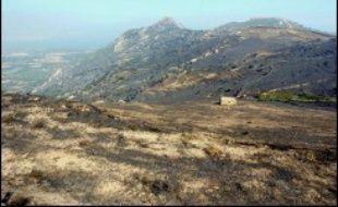 L'incendie au cours duquel neuf pompiers ont été blessés samedi en Haute-Corse, dont trois grièvement, et celui qui a menacé un temps des habitations sur les hauteurs d'Ajaccio, en Corse-du-Sud, étaient en passe d'être éteints dimanche après-midi et ne présentaient plus de risques, a-t-on appris auprès des pompiers.