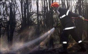 Un pompier combattant un feu de forêt (illustration).