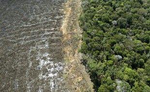 Vue aérienne d'une partie de la forêt près de Sinop, au Brésil, en août 2020.