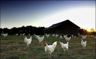 L'éleveur qui produit 16.000 volailles par an, a interpellé Emmanuel Macron sur sa misère.