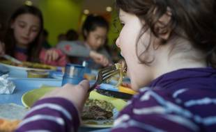 Le projet de loi alimentation examiné dès ce mardi à l'Assemblée prévoit que les menus servis dans les cantines scolaires devront comporter au moins 20% de produits bios d'ici 2022.