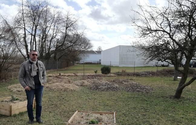 Noham Choulant au milieu d'un jardin partagé d'entreprises à Reichstett, dans le Bas-Rhin.