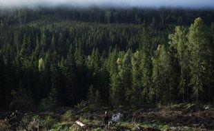 L'est de la Scandinavie et le bassin méditerranéen seront le plus affectés par le réchauffement climatique qui bouleversera l'Europe dès 2021, selon des projections publiées jeudi par l'Agence Européenne pour l'Environnement