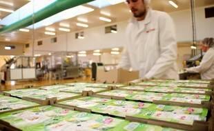 Illustration d'un homme travaillant au sein d'une usine d'agroalimentaire, ici près de Rennes.