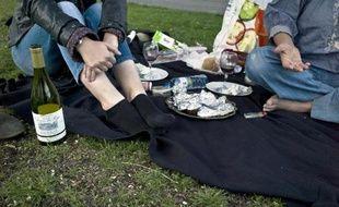 Des jeunes consomment de l'alcool lors d'un pique-nique
