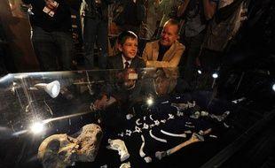 Le squelette d'un hominidé découvert en Afrique du Sud est montré au public le 8 avril 2010. Il s'agit de Sediba, un austrolopithèque.