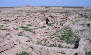 Enfouie pendant des millénaires dans les sables du désert turkmène de Karakoum, la cité antique de Gonour-Tepe, découverte à l'époque de l'URSS, révèle tout doucement, au gré des fouilles, ses mystères au monde.