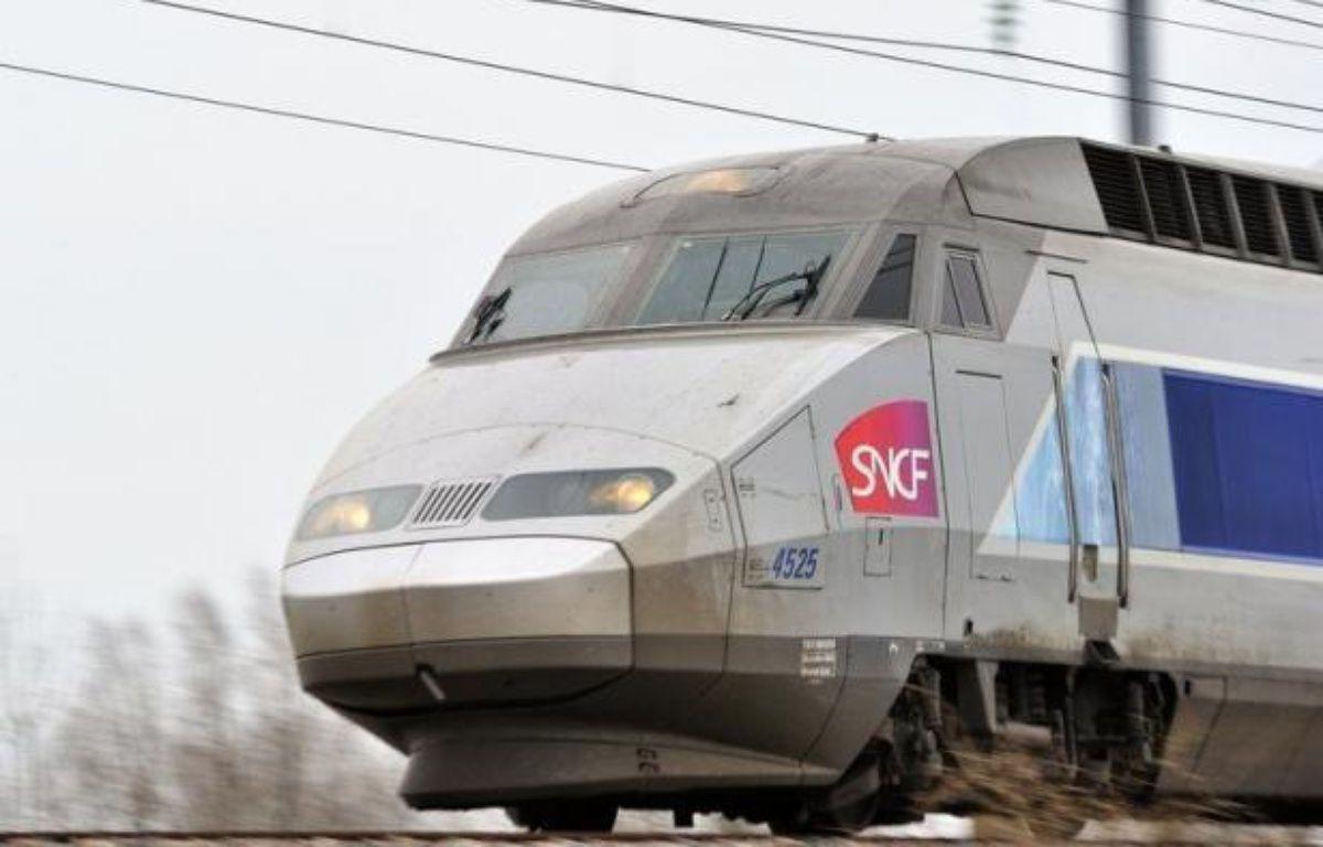 Orange déploie la 4G sur la ligne de TGV Lyon-Paris. Seuls ses abonnés pourront en profiter. – Philippe Huguen afp.com