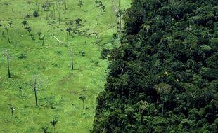 Selon un rapport de plusieurs organisations environnementales, la quasi-totalité de la déforestation en Amazonie brésilienne est illégale.