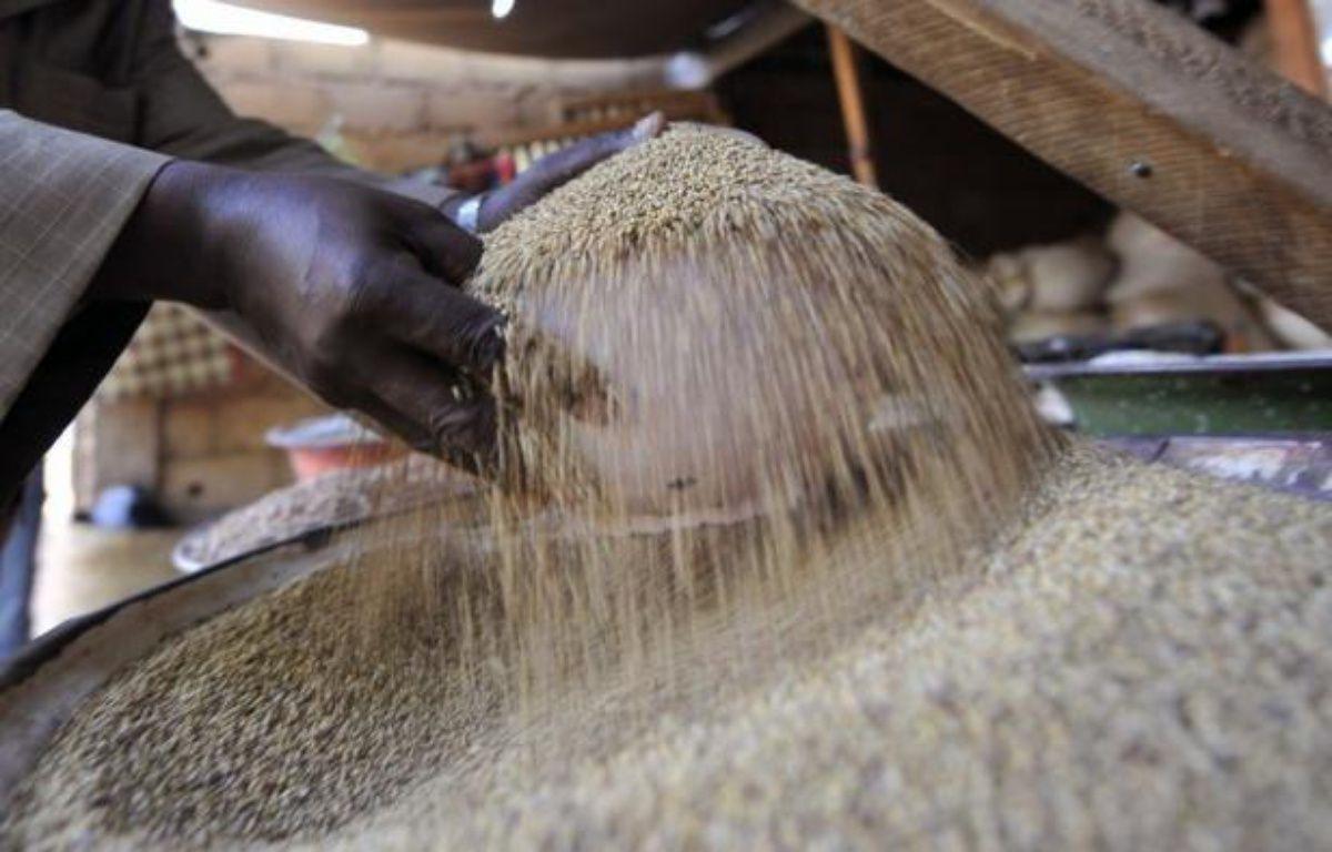 Les prix alimentaires mondiaux ont connu en juin un troisième mois consécutif de baisse, reculant de 1,8% par rapport à mai, tombant ainsi à leur plus bas niveau depuis septembre 2010, a annoncé jeudi l'Organisation des Nations unies pour l'alimentation et l'agriculture (FAO). – Sia Kambou afp.com