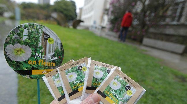 nantes c 39 est le printemps des kits de graines retirer gratuitement pour fleurir les rues. Black Bedroom Furniture Sets. Home Design Ideas