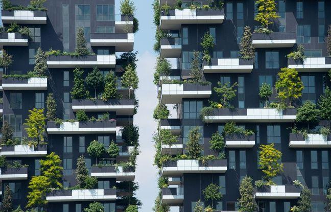 A Milan, quelque 900 arbres ont été planté sur les deux tours du Bosco Verticale.