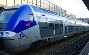 Illustration d'un TER, à Grenoble (Isère).