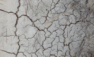 Le Languedoc confronté à une sécheresse historique.