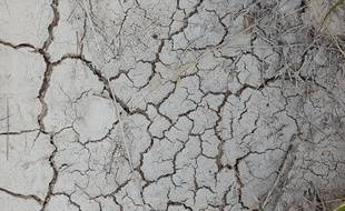 Le département de l'Hérault confronté à une sécheresse historique.
