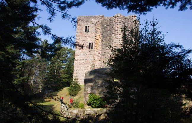 Et au fond, le château du Birkenfels.