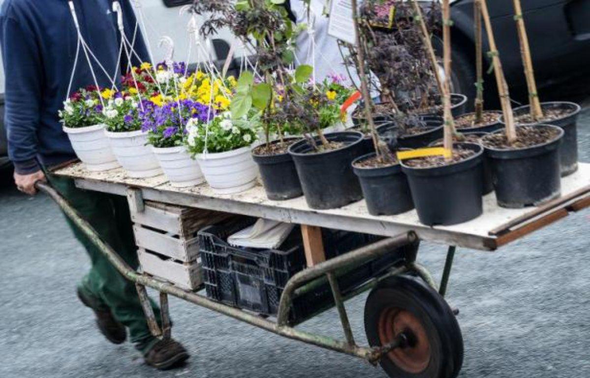 Le Parlement a adopté définitivement jeudi, par vote à l'Assemblée nationale, une proposition de loi écologiste qui interdit les pesticides dans les espaces verts publics à partir de 2020 et dans les jardins particuliers à compter de 2022. – David Ebener DPA