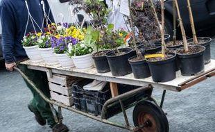 Le Parlement a adopté définitivement jeudi, par vote à l'Assemblée nationale, une proposition de loi écologiste qui interdit les pesticides dans les espaces verts publics à partir de 2020 et dans les jardins particuliers à compter de 2022.