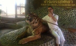 Capture d'écran d'une vidéo montrant un tigre contraint par des coups de perche sur son museau de rugir pour prendre la pause avec des touristes