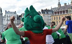 Des supporters de l'Irlande à Lille, le 22 juin 2016.