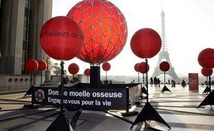 Du 10 au 18 mars se tiendra la 13e Semaine nationale de mobilisation pour le don de moelle osseuse en Ile-de-France.