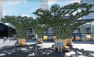 Les premières structures végétalisées de la start-up Urban Canopée seront installées à Toulouse.