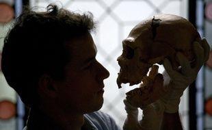 Illustration: un Homo sapiens tient le crâne d'un Homo neanderthalensis.
