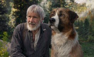 Le quotidien du chien Buck n'est pas toujours des plus reposants dans L'Appel de la Forêt.