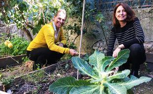 Le site niçois potager-en-ville.fr permet la rencontre entre jardiniers du dimanche.