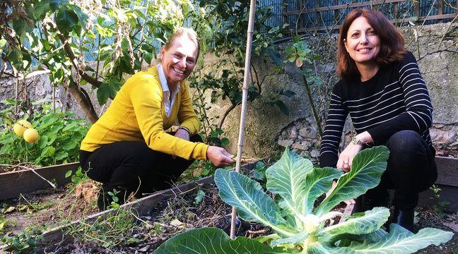 Le site niçois potager-en-ville.fr permet la rencontre entre jardiniers du dimanche.  – M. Frénois / ANP / 20 Minutes