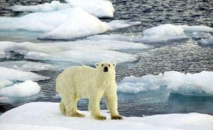 La température de l'air arctique a atteint un record en 2015.